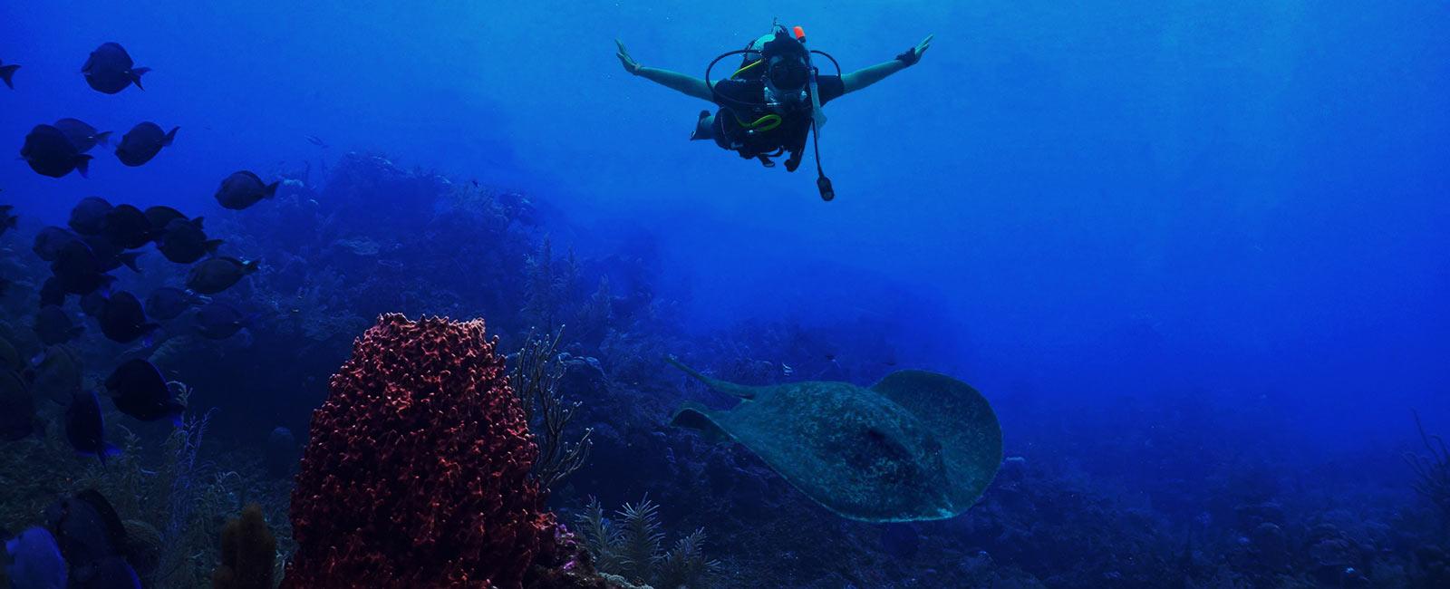Scuba Diving Gibraltar