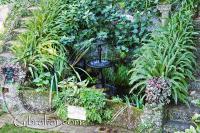 Fuente en el Valle o The Dell, Jardines Botánicos Alameda
