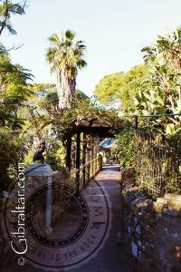 Puente de Giuseppe Codali, Jardín Botánico Alameda