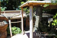 Recinto de los titíes de cabeza blanca, en el Parque de Conservación de la Vida Silvestre Alameda