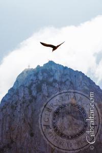 Playa de Levante y la cima del Peñon de Gibraltar