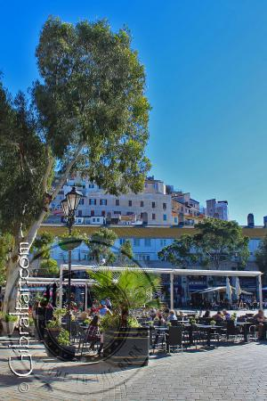 Afternoon snacks at Casemates Square