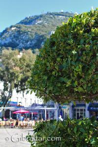 Grand Casemates Square in Gibraltar