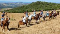 Horse Riding Gibraltar