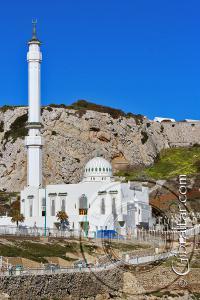 Mezquita del Custodio de las Dos Mezquitas Sagradas
