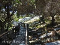 Jew's Gate Cemetery Walkway