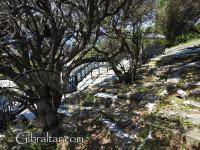Numerosas tumbas en el Cementerio de la Puerta de los Judíos o Jew's Gate Cemetery.