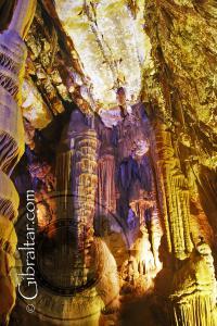 Magnificent cave ceiling Lower Saint Michael's Cave