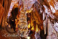 Cámara de la Catedral, Cueva Baja de San Miguel