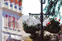 Hanging basket on Main Street Gibraltar