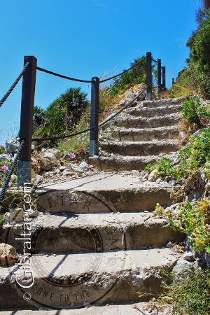 The Mediterranean Steps in Gibraltar