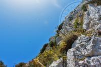 Acantilado y gaviotas en la Escalera del Mediterráneo
