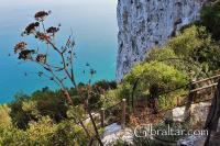 Perspectiva de la Escalera del Mediterráneo