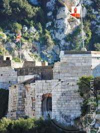La Fortaleza de Parson y sus banderas