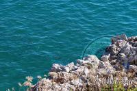 Peces en las aguas de la Bahía de Sandy Beach