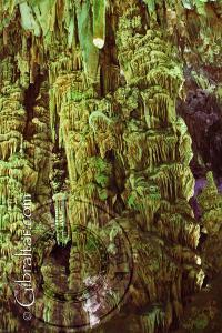 'Mad Mans Cake Factory' - Saint Michael's Cave