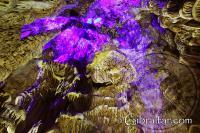 La gravedad desafía los elementos en la Cueva de San Miguel