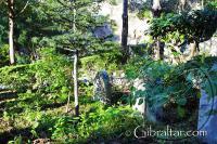 Trafalgar Cemetery Gibraltar Garden