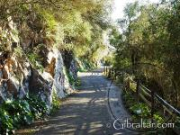 Caminando a lo largo de la carretera de St. Michael
