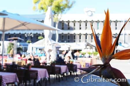 Es increíble pensar, que hace tan sólo veinte años, la Plaza Grand Casemates en Gibraltar era un aparcamiento de coches. Sin embargo, si visita la plaza en la actualidad, le dejará con un enfoque totalmente diferente. Con sus cafés y terrazas, el radiante sol y la pintoresca vista del famoso Peñón, la Plaza Grand Casemates es sin duda uno de los mejores lugares de descanso de Gibraltar.